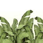 фотообои Оренбург листья белый фон